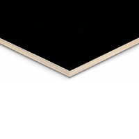 Form Ply | 17mm | Black Film Faced Plywood